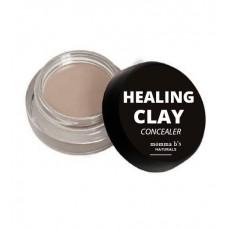 Acne Healing Concealer Makeup / Clay / Sea Buckthorn Berry